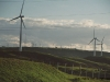 nz_windpark_17a