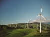 nz_windpark_19a